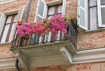 Flower Balcony / by YifatS