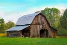 Born in a barn / by Gloria Shipley
