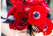 red wedding / Red hues make a lovely color scheme for your wedding. Bright red, cranberry, pink, and dark red blend perfect with light blue, black, gold, silver, and grays. / by michelle mospens