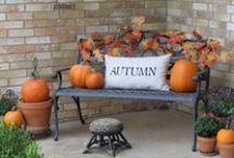 Halloween/Fall / by Rita McCurtain