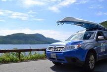 ACA Subarus / Subaru is the Official Vehicle of the ACA.