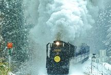 Winter / by Gail @ Joyforroses