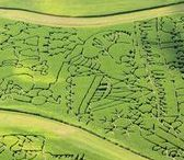 Fall in Wisconsin: Corn Mazes / See Wisconsin's creative and classic corn maze designs and locations! There's endless fun waiting for you and your family on these crisp, fall days.