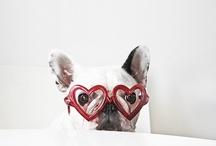 French Bulldog Love / by Jennifer Richardson