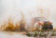 Dakar 2016: 5th stage / (Photos: Gedmantas Kropis)