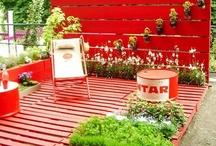 Rooftop Garden / by Jasmine Trabelsi