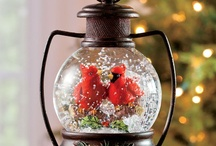 .✿⊱╮SNOW GLOBES / ******************** / by Shirley Simpson