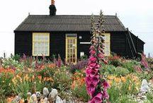 Garden Design / Gardens, picnics, small farms, and homestead inspiration.
