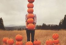 Autumn/ Halloween / Decorating ideas for Halloween and the magical arrival of autumn.