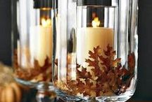 Fall & Thanksgiving / Decor and more for Fall and Thanksgiving / by Lindsy Carranza