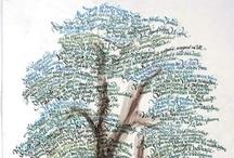 Genealogy / by ScrapGirlfriend