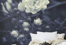 W A L L P A P E R S / exclusive wallpapers - great interiors