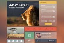Web Design/ UI