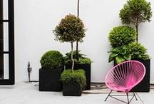 Garden Love / some inspiration for your garden, balcony or everything outside the house