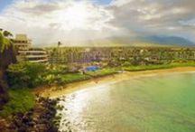 Hawaii / by Michelle Joyce