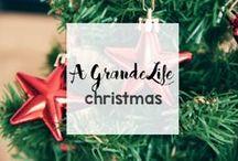 Holidays: Christmas / Everything Christmas - recipes, crafts, decor, homemade decorations and more