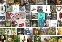 02. BIRD FEEDER / mangiatoie per uccelli