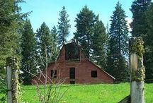 Big and Small Beautiful Barns / by Jennifer Cole