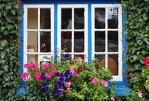 HOME: ...Window boxes - The icing on the cake --- / Container gardens. - Arches. Containers. Trellis'. Containers. Fences. baskets. Potted plants. Intimate Outdoor Spaces.