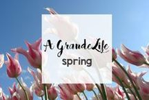 Seasonal Fun: Spring / Celebrate Spring with beautiful spring flowers, home decor, kids' crafts, and more!