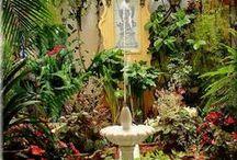 Jardins e Flores/Garden and Flowers