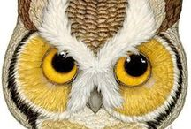 Owls / All kinds of owls real and fake.  Crafts, posters, photos, and more!