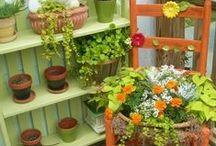 Cadeiras e Flores/Chair and Flowers