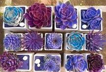 Garden Ideas / Idee arredo per il giardino dei tuoi Sogni.