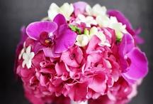 Fuscia Pink Wedding Ideas