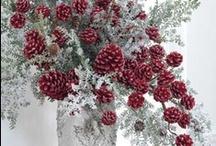~ Christmas Ideas / Decorations ~