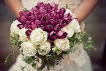 Bridal Bouquets / by Patricia Edsall Hartley