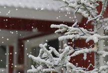 ~ Christmas Cottage Inn ~