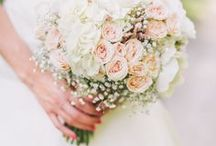 A someday wedding / by Stephanie Mollohan