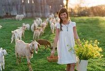 Mary had a little lamb / by Mary Ann Long