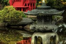Japenese Garden / My first love of the nature *.*