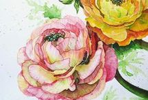 Watercolor / by Kristy Edwards