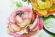 Watercolor / by Kristy Edwards