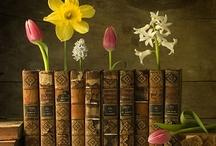 Books Galore..Love It / by Debbie Wakolee