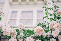 Inspiration / Inspiration for photograph to inspire Charleston Wedding Photographer - sMm Photography.