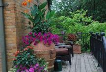 My Secret Garden / by Cindy Smith