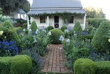 Decorative Gardening / Gardening and making it a lovely space.