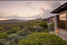 African Lodges / A selection of Africa's best safari lodges