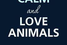 I Love Animals ♥