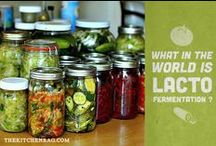 Food~Fermented Fruit & Veggies