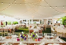 Tips - Ideas - Inspirations / Tips for a successful wedding day! / by Oak Hill Weddings, Galena IL