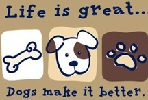 I Love Dogs / For all my loves:  Jasmine, Jake, Persia and Brooke. / by Karen Elma