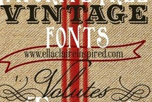 Fonts Fun / by Victoria Young