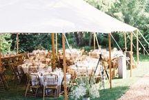 wedding / dinner