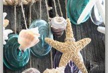 She Sells Sea Shells / by Jacqueline