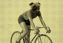 Bikestuff / by Ed van der Hoek